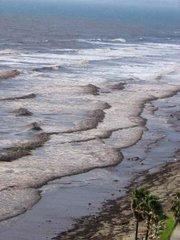 The runoff from Arroyo Burro Creek has turned the water and waves at Hendry's beach a deep chocolate brown tone.