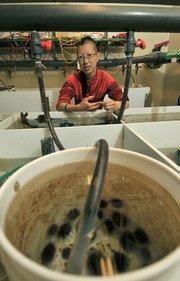 Dr. Pauline Yu