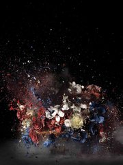 Ori Gersht, Blow Up: Untitled 4, 2007.