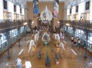Oceanographic Museum and Aquarium