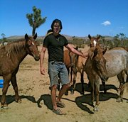 Atma Cornelius meets several rescued mustangs at Lifesavers Wild Horse Rescue in Lancaster, CA.