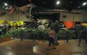 May 20, 2012 Santa Barbara Museum of Natural History Dinomania exhibit.