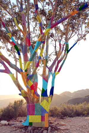 Artist Rendering Of What Steve Envisions The Sycamore Tree Will Look Like  When The Project Is