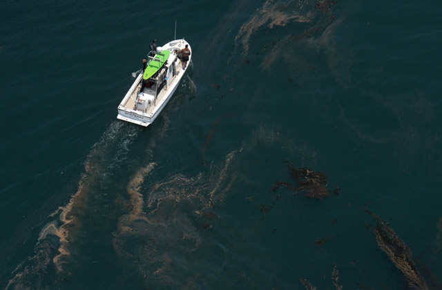 oxnard helicopter tours with Hell Yeah Heli Tours on User details likewise Local Attractions moreover Whale Watching Air as well multibusinessdirectory furthermore Whale Watching Air.