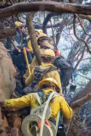 Lookout Fire. Los Padres engine crew and Vandenberg hot shots cut hand line in rugged terrain below Painted Cave.