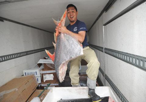 The fukushima fallout for Santa barbara fishing report