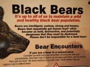 Black bear warning poster at Devils Postpile National Monument
