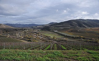 <b>BEAUTY SURROUNDS: </b> Pictured is a view of the Sta. Rita Hills, looking southeast from the Mt. Carmel Vineyard.