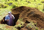Oliver Chadwick, a professor in UCSB's Department of Geography and Environmental Studies Program, takes soil samples from one of three study sites on Easter Island.