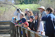 Maggie Sherriffs, back row, third from left, points out various bird species to her young charges at Lake Los Carneros.