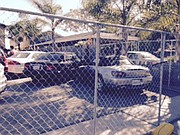 Cars parked behind fences erected for Deltopia.