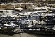 Cleanup from the Plains Oil spill continues on the coast of Refugio State beach (May 21, 2015)