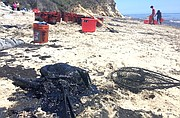 Barely recognizable, the body of a dead pelican sits next to dozens of buckets of oil
