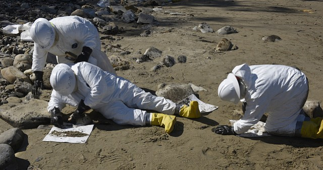 Workers clean oil from the rocks with wire brushes and putty knifes at Refugio State Beach following the May 19th Plains All American oil spill (June 1, 2015)