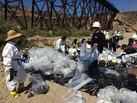"As well as bits of tar, plastic bagfuls of oil-smudged discarded gear were collected by ""official"" volunteers."