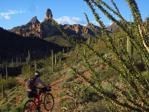 Eszter Horanyi has learned to travel light when she bikepacks.