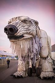 World Wildlife Fund polar bear