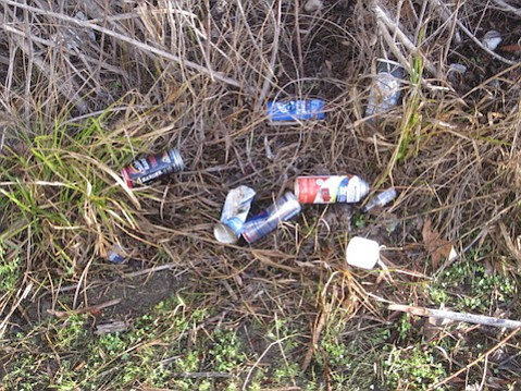The sight of trash greeted the author on a hike along the Santa Ynez river bottom.