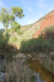 The red rocks of Agua Caliente Canyon make for some striking color displays.
