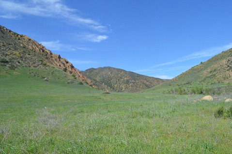 The vast meadowlands of Agua Caliente Canyon.