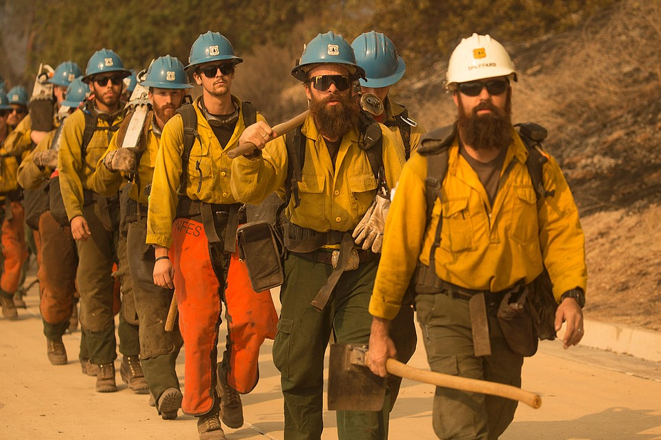 Wildland firefighters prepare to build hand lines on the Thomas Fire.