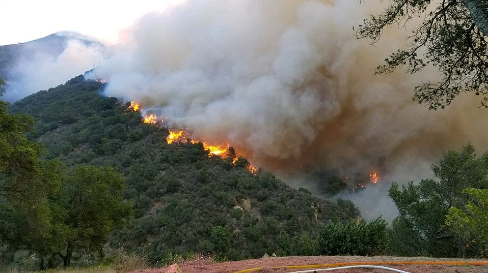 The Thomas Fire roars on a ridge looking east from the Tea House at the top of west Cold Springs Canyon.
