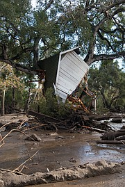 A cottage lodged in an oak tree on East Valley Road, where debris flowed 15-20 feet above the creek bed at the height of the mudslides early Tuesday morning.
