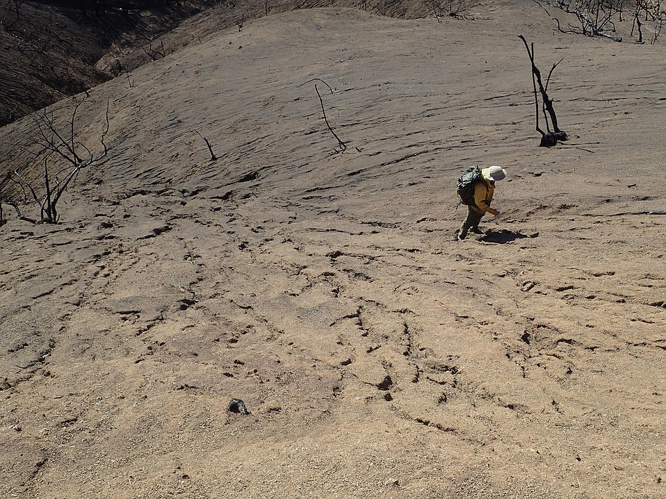 A member of the state, county, and federal post-flood assessment team examines a hillside covered with mud above Montecito, part of the debris load poised in the Thomas Fire burn zone.