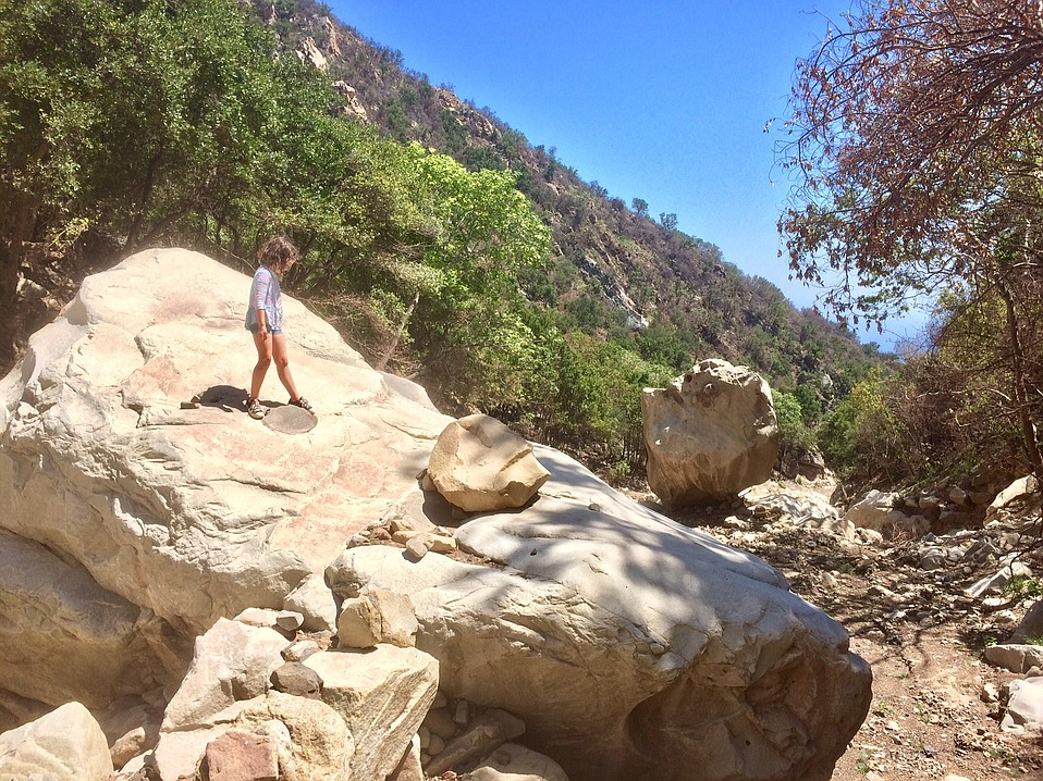 Nina Hamm explores San Ysidro Canyon, which is showing lots of new growth and wildlife since last winter's fire and flood but remains off-limits at the moment.