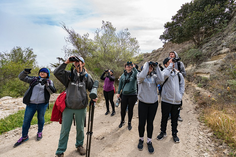 Professor Allison Alvarado of CSU Channel Islands (with red bag) leads her ornithology class of undergraduates around Santa Rosa Island in a canyon just behind the research station