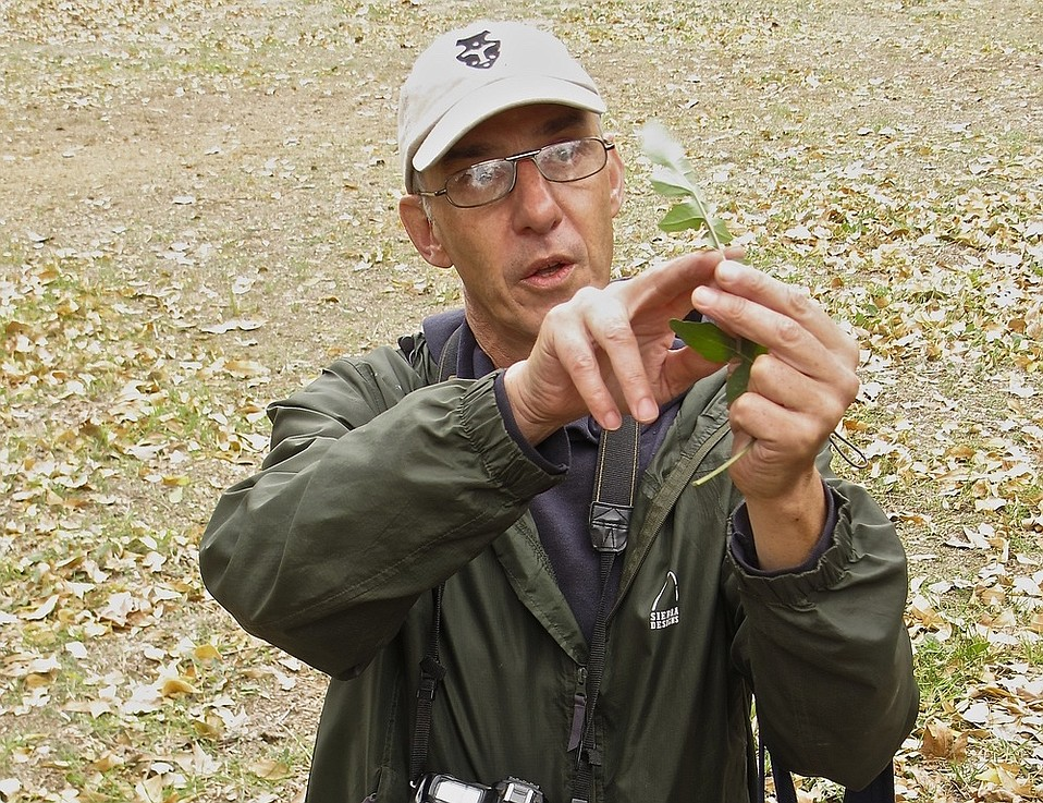 Pascal Baudar teaches how to find backcountry beer ingredients.