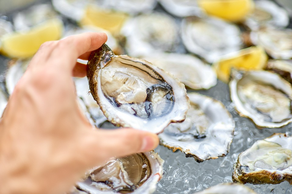 Oyster lovers will unite for a friendly competition between chefs at Sunday's shellfish showdown atop the Canary Hotel.