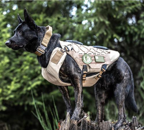 Police Dogs Getting Bulletproof Vests