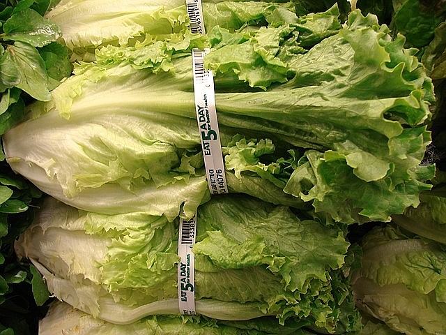Romaine Lettuce Labels Have Shortcomings
