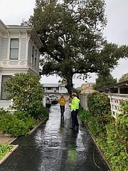 An oak landed against a house on West Valerio.