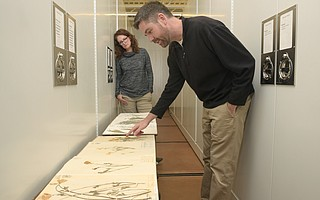 Botanic Garden scientists Dr. Denise Knapp and Dr. Matt Guilliams look over the herbarium's collection of California poppies. The multiple specimens, the oldest of which dates back to 1878, allow researchers to track physical attributes of the plant through time.